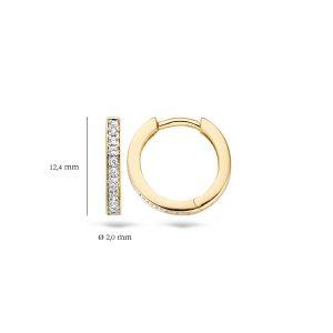 Ooringen 7163BZI – Geel en Wit Goud (14Krt.) met Zirconia
